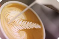 咖啡培训速成班
