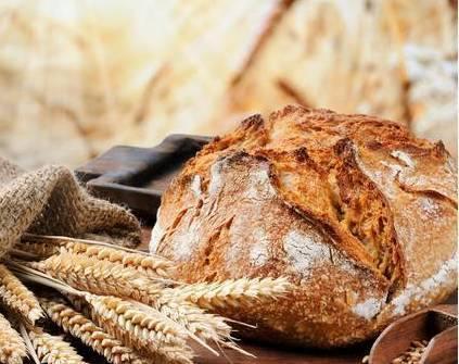 为什么做面包要放盐